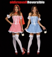 7630 Dreamgirl Costume, Twice Upon a Time Fully reversible corset sty