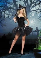 8113 Dreamgirl Costumes, Starry Night Witch Easy to wear tube style d