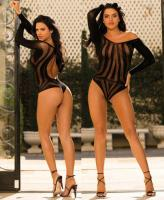 90406 Shirley Racy sheer mesh long sleeve teddy